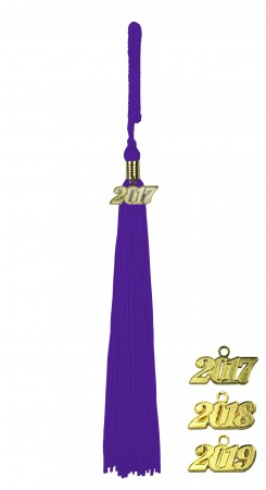 PURPLE MIDDLE SCHOOL JUNIOR HIGH GRADUATION TASSEL